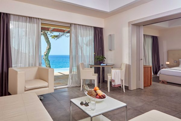 deluxe-suite-with-private-use-pool-living-room